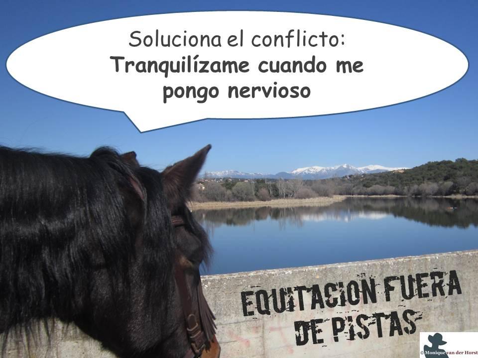 ¿Cómo tranquilizar a un caballo por el campo?